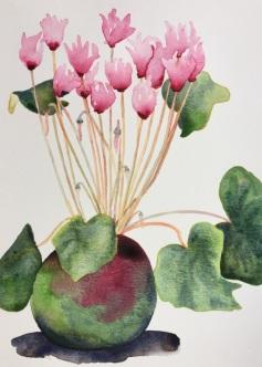 June 14 flowerssml